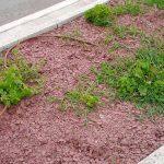 cubiertas-segovia-jardineria-escarcha-pizarra-roja-4