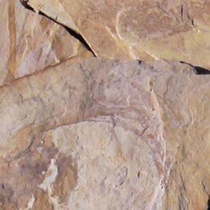 Cubiertas Segovia - Piedras irregulares: Cuarcita amarilla