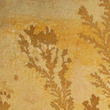 Cubiertas Segovia - Piedras regulares - Varios modelos: Menta fósil